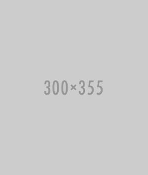 300×355